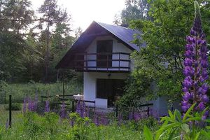 Kaszuby Domek na leśnej polanie